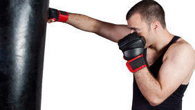 Fighter Training Royalty Free Stock Images