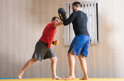 Fighter training his MMA skills Royalty Free Stock Images