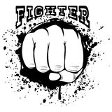 Fighter_2 Stock Image