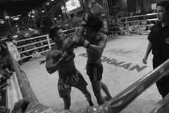 Fighters Compete in a Thai Boxing Match. Muay Thai fighters compete in a Thai kickboxing match at MBK Fight Night on February 22, 2012 in Bangkok, Thailand Stock Photography