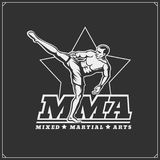 Fighters of martial mixed arts. Sport club emblem. Vector illustration Stock Photography
