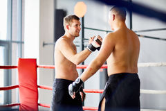 Fighters Shaking Hands in Boxing Ring Royalty Free Stock Photos