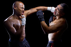 Fighters Sparring Stock Photos