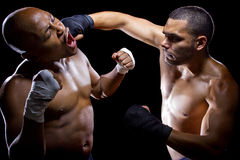 Fighters Sparring Royalty Free Stock Photos