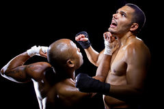Fighters Sparring Royalty Free Stock Photography