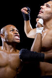 Fighters Sparring Stock Image