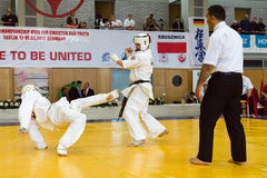 Fighters on the tatami. Stock Photography