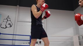 Fighters Touch Hair Sport Workout Boxer Exercise. Young Caucasian Kickboxers Train Indoor Gym Ring Athletic Competition. Low Kicks Physical Activity Concept stock video
