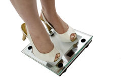 Fightin' Weight! Royalty Free Stock Photos