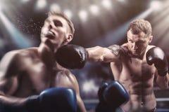 fighting stock fotografie