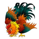 Fighting black-red rooster Royalty Free Stock Image