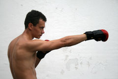 Fighting boxing man Royalty Free Stock Photography