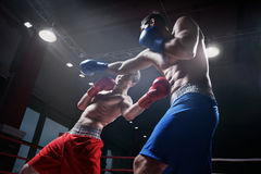 Fighting in boxing ring. Boxers fighting in boxing ring Royalty Free Stock Images