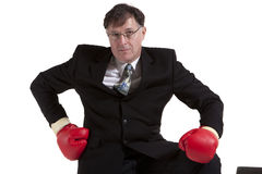 Fighting business Royalty Free Stock Photos