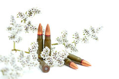 Fighting cartridges Royalty Free Stock Photos