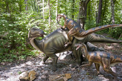 Fighting dinosaurs. Details of the fighting dinosaurs in the forest Stock Images