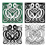Fighting dragons with celtic knot ornaments Royalty Free Stock Photo