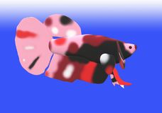 Fighting fish in 3D illustration. Fighting fish Beta sp. in 3D illustration, colored Asian fresh water aquarium fish Stock Photos
