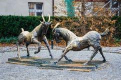 Fighting goats, Poznań, Poland. The fighting goats - the main landmark of Poznań, Poland Stock Photography