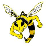 Fighting Hornet. Character mascot for sports teams on white background vector illustration