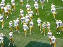 Fighting Irish Take the Field Stock Photos