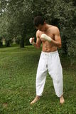Fighting man practicing outdoor royalty free stock photography