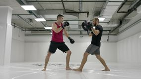 By fighting a mma with a trainer, he works out the striking technique of arms and legs, training the reaction of dives. And deviations from strikes. Workout stock footage