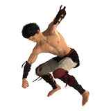 Fighting Monk Royalty Free Stock Image