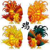 Fighting rooster four color version. Set a fighting rooster a symbol of 2017 according to the Chinese calendar in four options of color. Red, orange, fiery Royalty Free Stock Photography