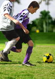 Fighting for soccer  ball Royalty Free Stock Image