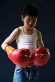 Fighting stance Royalty Free Stock Photography