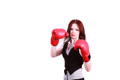 Fighting to the top. royalty free stock images