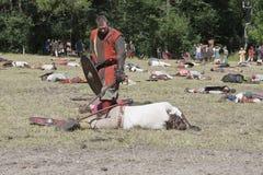 Fighting Vikings -  Worrior Down Royalty Free Stock Photos