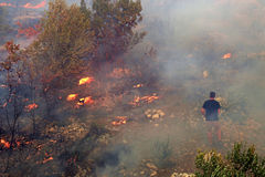 Fighting with the wildfire. Zrnovnica, Split, Croatia - July 17, 2017: Man fighting with the massive wildfire burning down the forest and villages around city Stock Photos