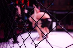 Fights without rules. Close-up of the metal cage, in the background arena of the octagonal scene by the battle of two professional male athletes, in the royalty free stock image