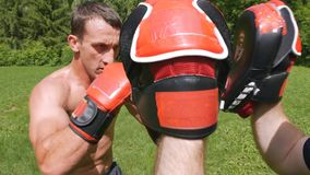 Fights without rules-mixed martial arts training stock video footage
