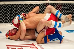 Fights without rules or MMA Royalty Free Stock Photography