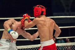 Fights without rules or MMA Royalty Free Stock Photos