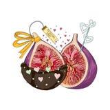 Figi w miłości w czekoladzie i Fotografia Stock