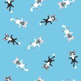 Figlarka błękitny bezszwowy wzór Obrazy Royalty Free