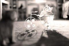 Figlarki obsiadanie w roweru kwiatu garnku Obraz Royalty Free