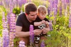 Figlio del bambino con il papà nel campo del lupino Immagine Stock