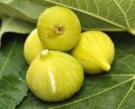 Figos amarelos Foto de Stock
