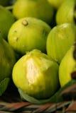 Figs. Basket full of fresh figs Stock Image