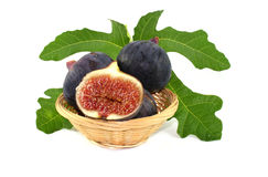figs Royaltyfria Bilder