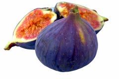 figs royaltyfri foto