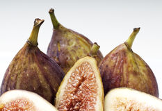 figs Royaltyfri Fotografi