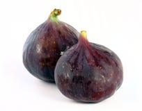 figs Arkivbild