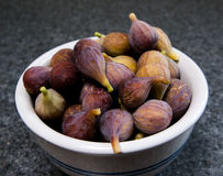Figs. Bowl of fresh picked figs Royalty Free Stock Image