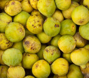 Figs. For image backgrounds and food illustrations Stock Photography